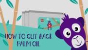 Война срещу палмовото олио! 5 стъпки за спасяването на орангутаните!