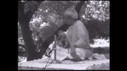 Д. Кришнамурти - Открита дискусия, Мадрас , 11.01.1979 /8/