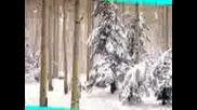 Коледни Тапети