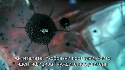 """""""скритият живот на клетката"""""""