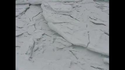 Звуците на замръзнало море