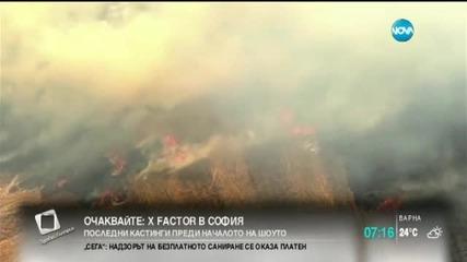 Горски пожар заплашва 450 къщи в САЩ