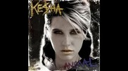 Kesha - Take It Off