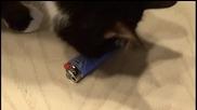 Как да си направим лазерна запалка
