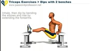 упражнения в домашно услови е - трицепс