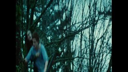 Twilight - trailer