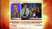 голдън ретривър спасява 11 - годишно момче от пума