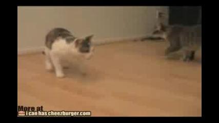 Неолувимият хамбургер... :d