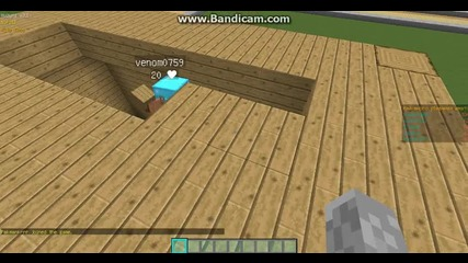С моя приятел в Minecraft...неговата къшта!