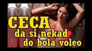 Ceca Velickovic - Da si nekad do bola voleo (hq) (bg sub)