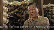 Д-р Лим - Защо Ганодерма (рейши), защо спирулина?