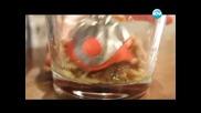 Фокача, гуакамоле с чесън, шоколадов мус с авокадо, свинско със зеленчуци - Бон Апети (16.04.2013)