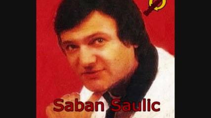 Saban Saulic-dva galeba bela