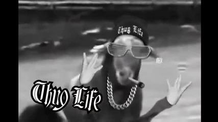 Смях -свирепа коза напада .. Thug Life