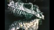 Ранения тиранозавър intro