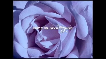 Alexandre Pires - Usted Se Me Llevo La Vida
