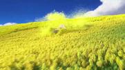 """Загубеният йети - клип """"Сърф в поляните"""""""