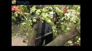 Репортаж на Днесбг - Акция на Гражданска защита