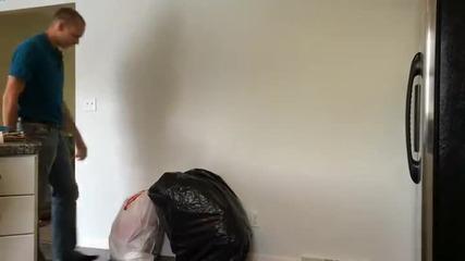 Маце успя да изплаши гаджето си толкова много, че той скоро няма да изхвърля боклука от вкъщи
