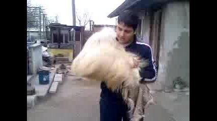 Кукер Преди Кукеров Ден В Бургас - 2007