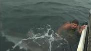 Близка среща с акула