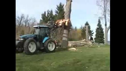 трактор събаря цяло дърво