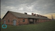 UK Teenagers Held Over Theft of Artefacts From Auschwitz Museum