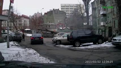 Падане на дърво!