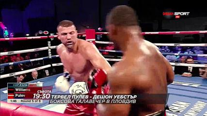 Тервел Пулев - Дешон Уебстър