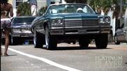 Buick Vert Floating- The Carolina's Series