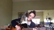 Сладко коте помага на стопанката си със свиренето на китара