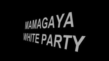 Mamagaya 1311