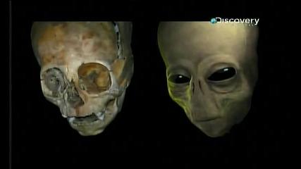 Срещи с извънземни - През май 2007 г., странно същество беше уловено в капан в Мексико