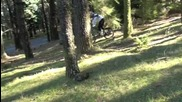 Downhill Trails in New Zeland