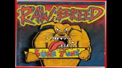 Raw Breed - How Many Lumps.avi