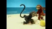 Macacos comicos