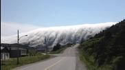 Страхотна гледка от Нюфаундленд, гора покрита с мъгла!
