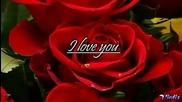 Обичам те - Селин Дион (с текст)