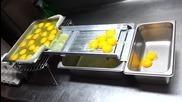 Домашна поточна линия за отделяне на жълтък - белтък