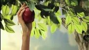 Smiah - Adam i Eva s kakvo li se hraniat v Raia - Vbox7