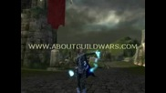 Guild Wars: The Internet Is For? :)