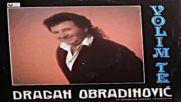 Dragan Obradinovic - Zbog tebe sam pijanac postao (bg sub)