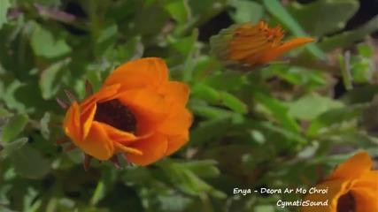 Enya - Deora Ar Mo Chroi (cymatics remix)