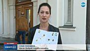 БСП показа нова схема от роднински назначения от ГЕРБ