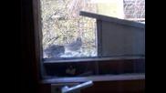 Хранилка за врабчета