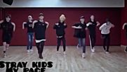 Kpop Random Dance Mirrored 208