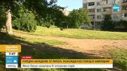 Поредно нападение от питбул, разхождан без повод и намордник