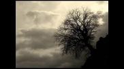 Anlipnes - Coffin (funeral doom)