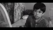 Откъс от Таралежите се раждат без бодли, 1971 г.
