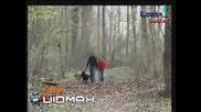 (Не Се Чуди, А Виж!) Басейн, Който е Скрит Под Листата в Парка! - Смях!